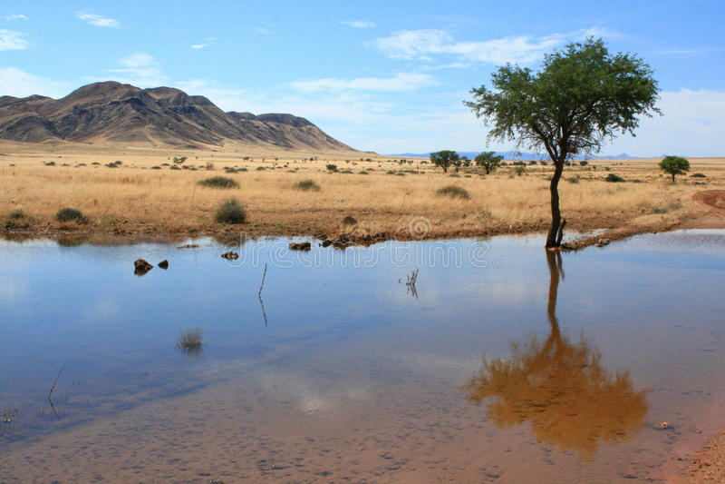 横向纳米比亚 库存图片