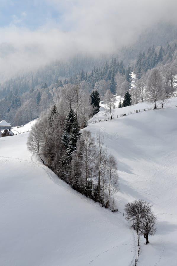 横向罗马尼亚冬天 图库摄影