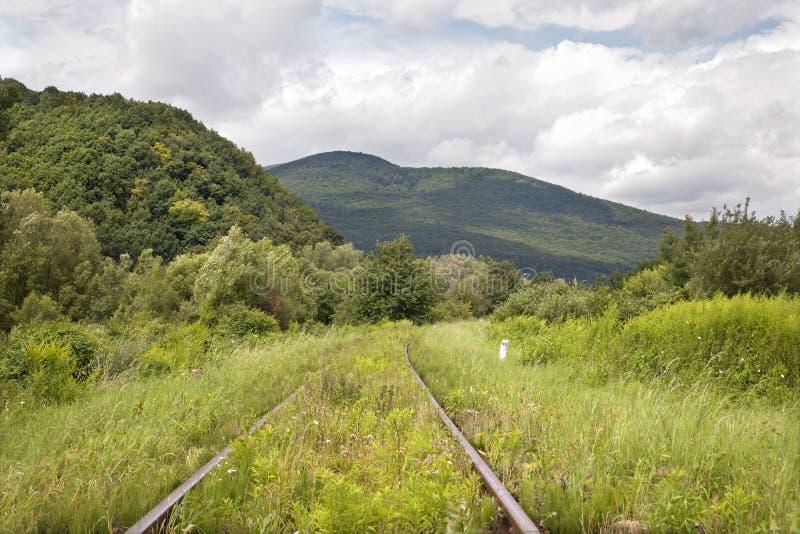 横向老铁路运输 免版税库存照片