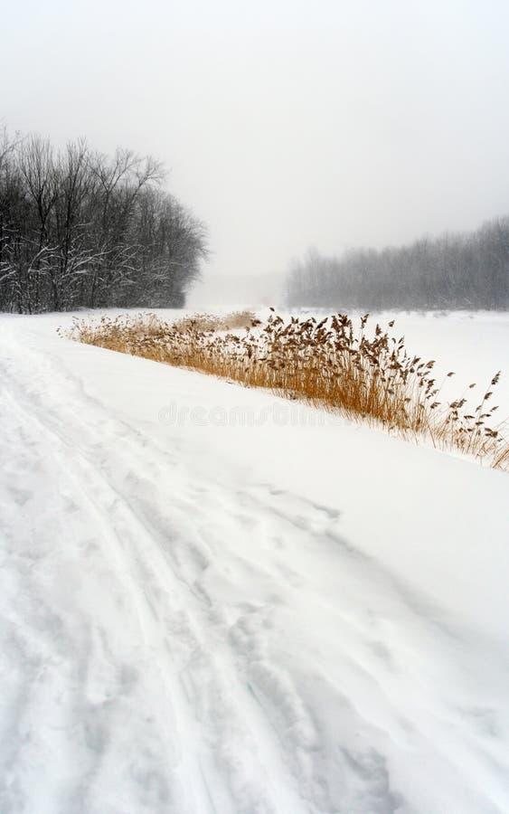 横向路径多雪的冬天 库存照片