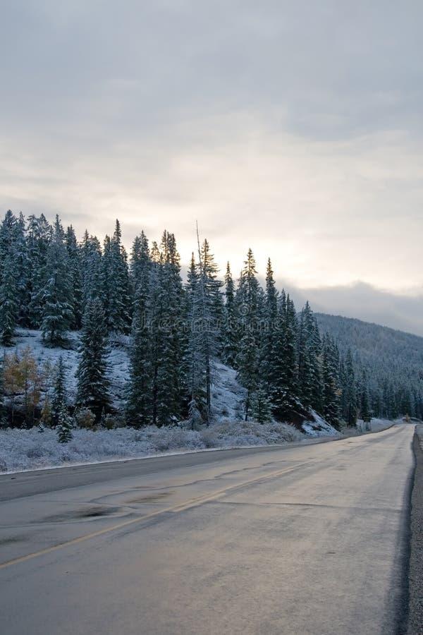 横向雪冬天 免版税库存图片