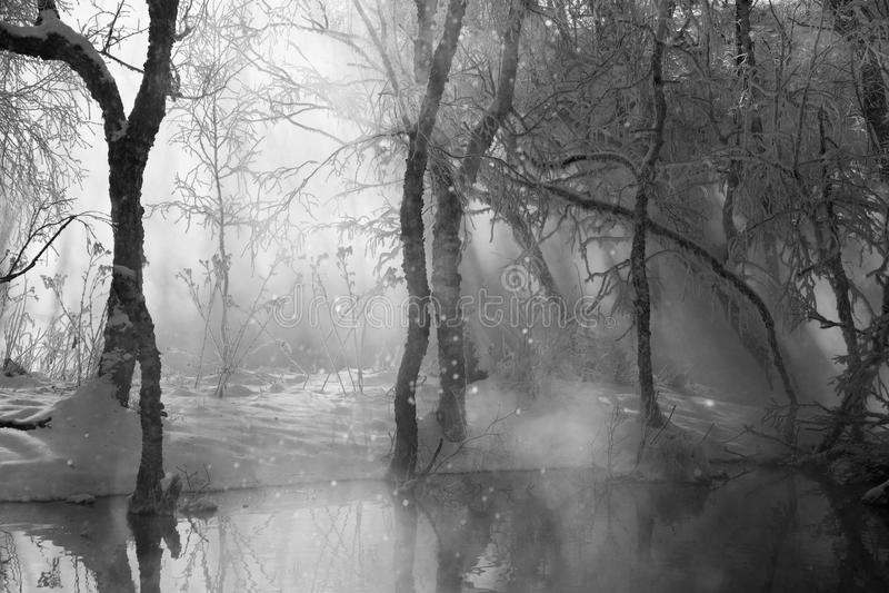 横向黑白照片冬天 图库摄影