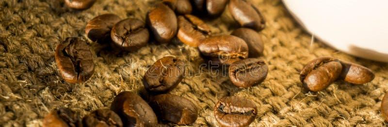横幅大小、咖啡和咖啡豆早晨;可利用的sp 库存图片