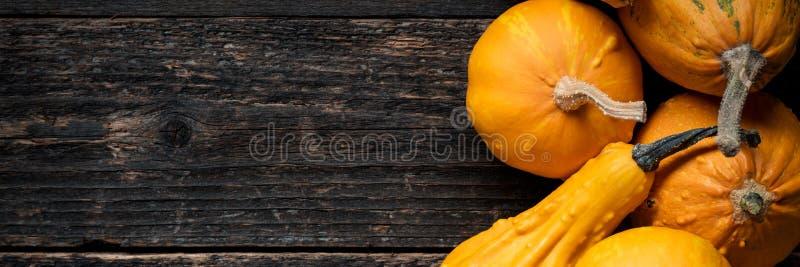 横幅愉快的感恩 各种各样的南瓜的选择在黑暗的木背景的 秋天菜 库存照片