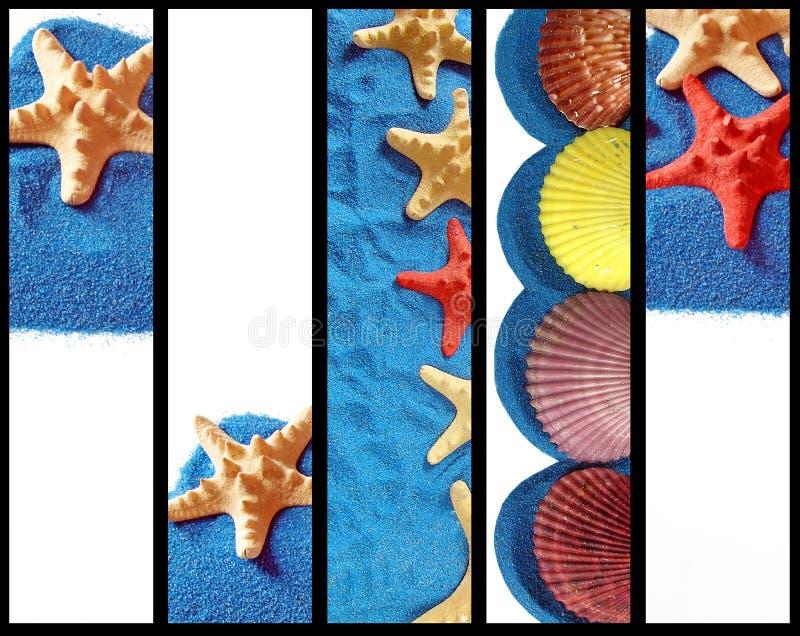 横幅标题沙子海星垂直 皇族释放例证