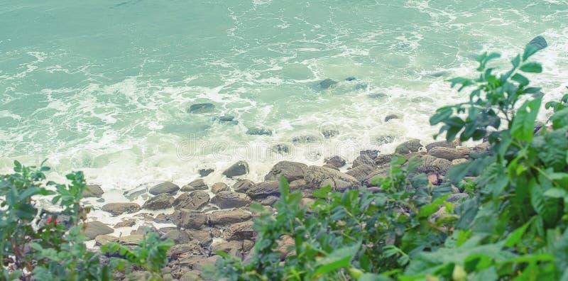 横幅海岸多岩石的海滩海小卵石挥动泡沫灌木玫瑰果自然海景 免版税图库摄影