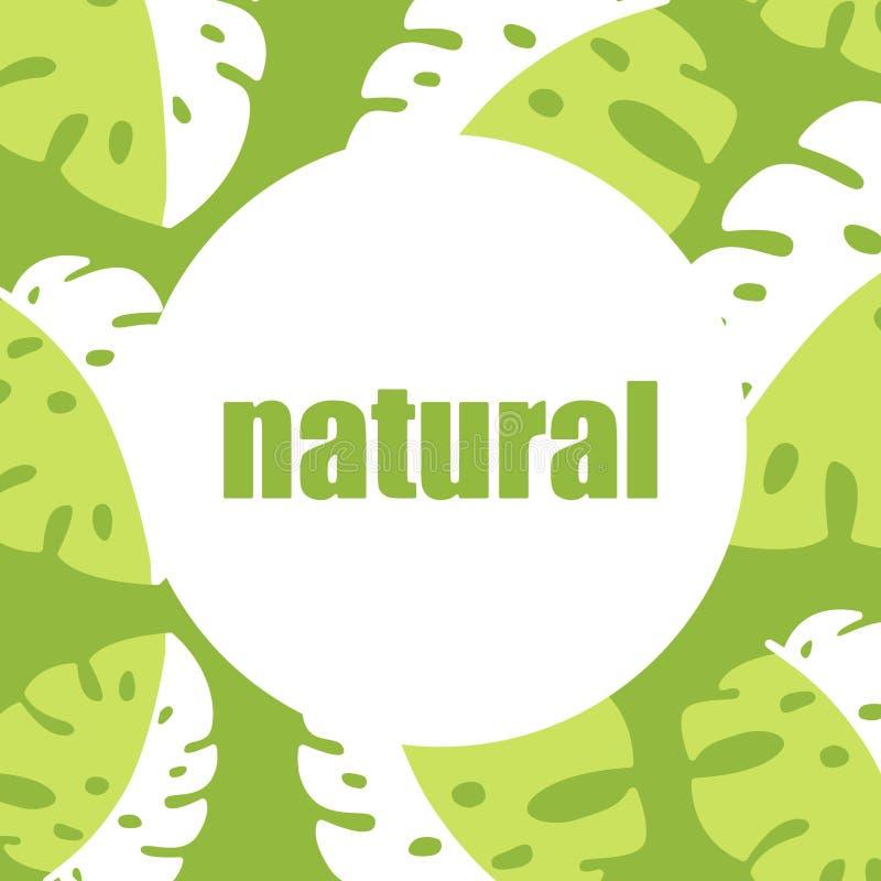 横幅,与棕榈叶的海报,密林叶子 美好的传染媒介花卉热带夏天背景 10 eps 库存例证