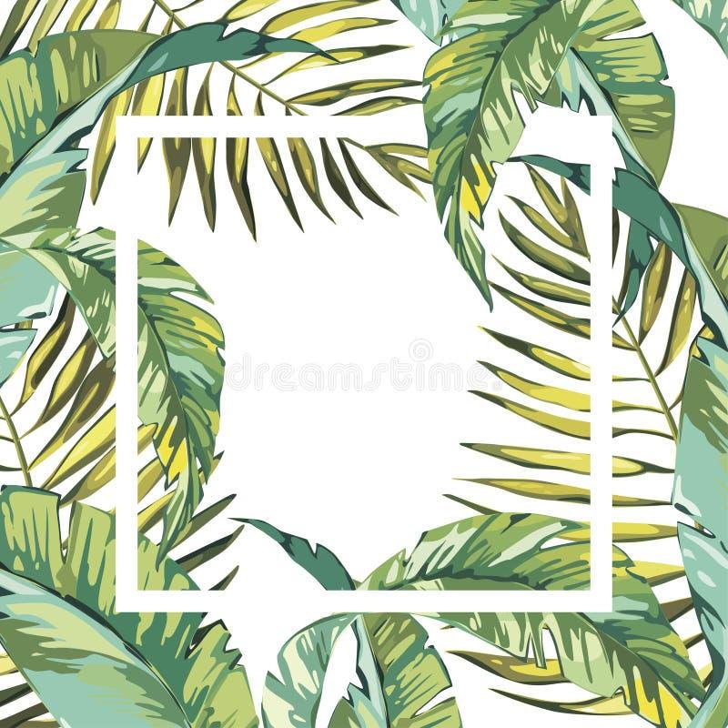 横幅,与棕榈叶的海报,密林叶子 美好的传染媒介花卉热带夏天背景 10 eps 皇族释放例证