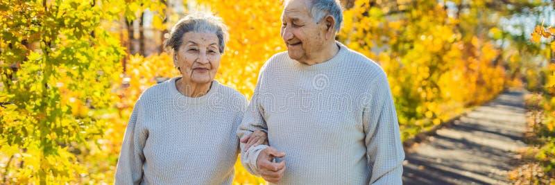 横幅,长期格式化秋天森林家庭、年龄、季节和人概念的-愉快的前辈愉快的老年人 免版税库存照片