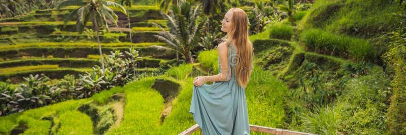 横幅,长的在典型的亚洲山坡的格式美好的年轻女人步行用种田的米,山形状绿色小瀑布 免版税库存照片