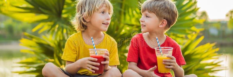 横幅,长的格式两男孩喝健康圆滑的人反对棕榈树背景  芒果和西瓜圆滑的人 库存图片