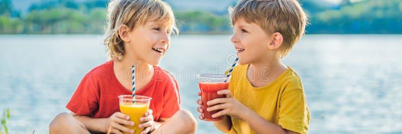 横幅,长的格式两男孩喝健康圆滑的人反对棕榈树背景  芒果和西瓜圆滑的人 库存照片
