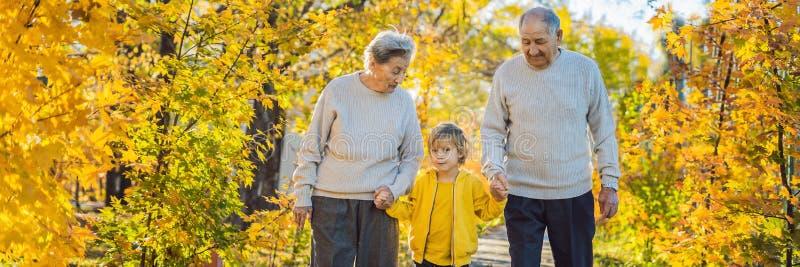 横幅,长的格式资深加上小孙子在秋天公园 曾祖母,曾祖父和伟大 库存图片