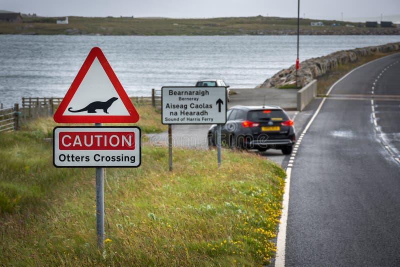 横渡在北尤伊斯特岛,苏格兰小岛的水獭的路标  库存照片