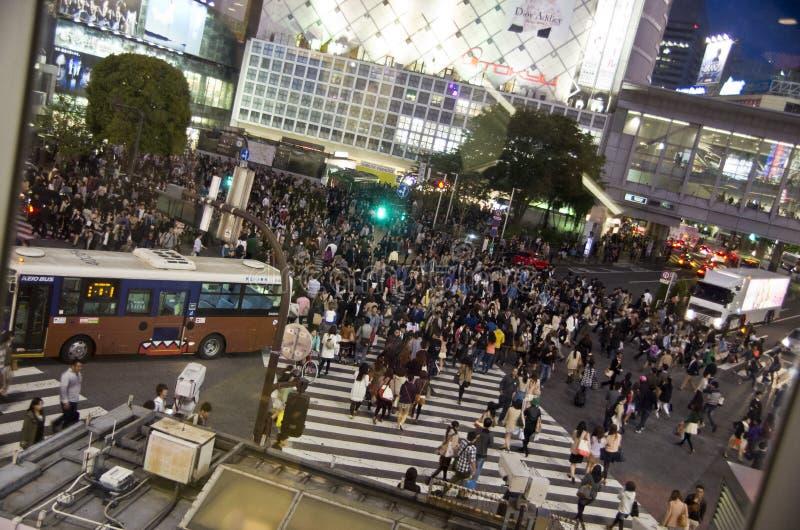 横渡的涩谷,东京 免版税图库摄影