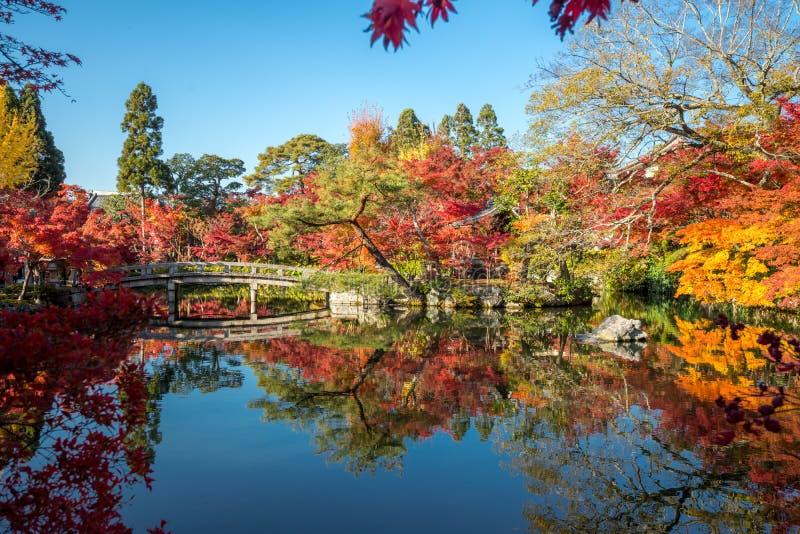 横跨围拢与五种颜色秋天的池塘的日本桥梁 库存照片