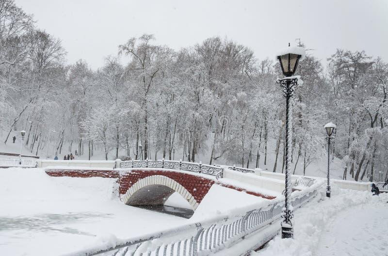 横跨天鹅湖的桥梁在公园 免版税库存图片