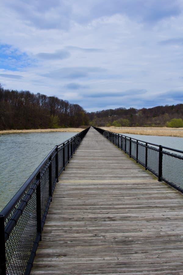 横跨杰纳西河的一个湿软的部分的委员会步行在罗切斯特,纽约 库存图片