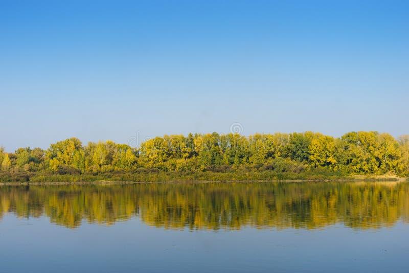 横跨河的秋天森林 免版税库存图片