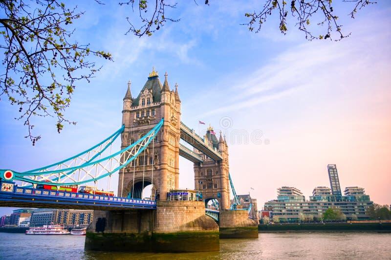横跨泰晤士河的伦敦塔桥在伦敦 库存照片