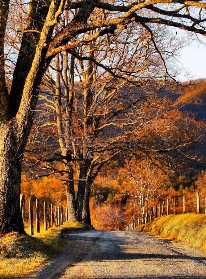 横跨谷的一条道路 库存照片
