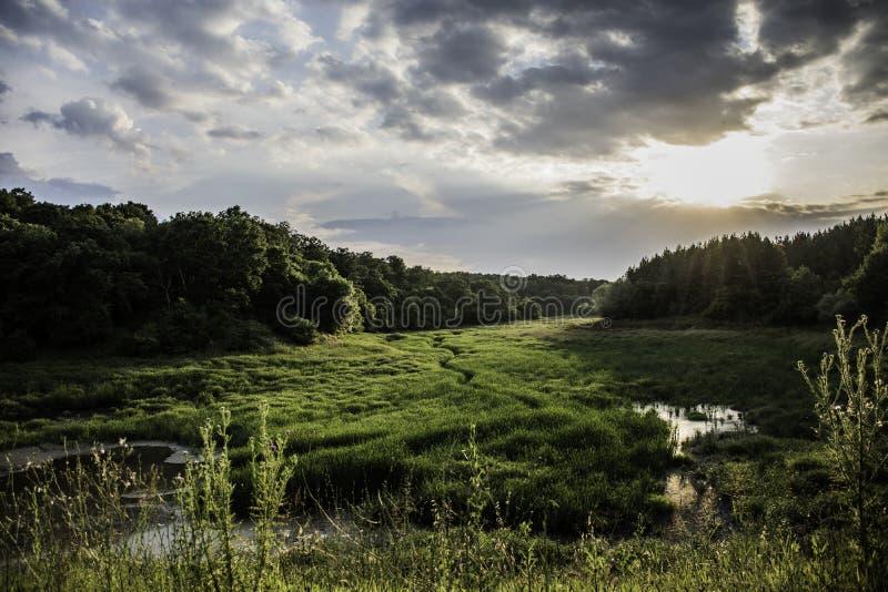 横跨谷的小河 库存照片