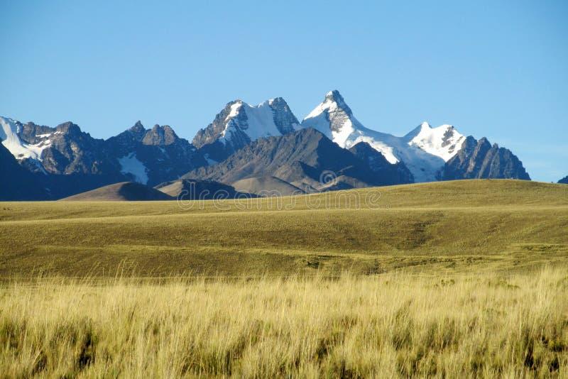 横跨领域的美好的山景在安地斯,真正的山脉,玻利维亚 免版税库存图片