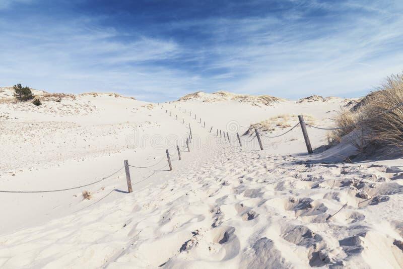 横跨风景沙丘的空的道路 免版税库存图片