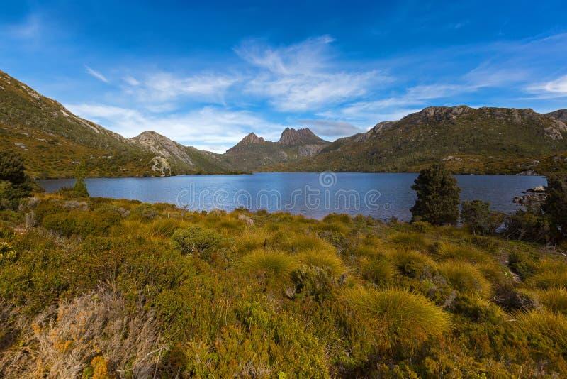 横跨buttongrass荒野的Dove湖与在ba的摇篮山 图库摄影