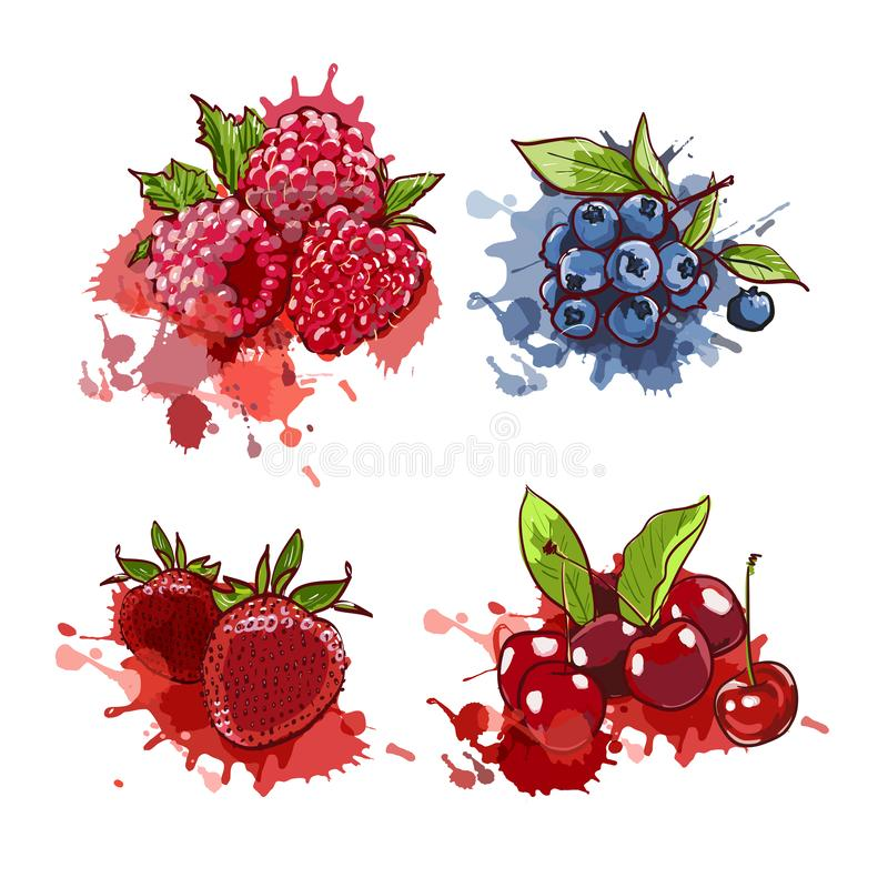 樱桃、草莓、蓝莓和莓在水彩飞溅并且察觉 在marcer的传染媒介手拉的例证 皇族释放例证