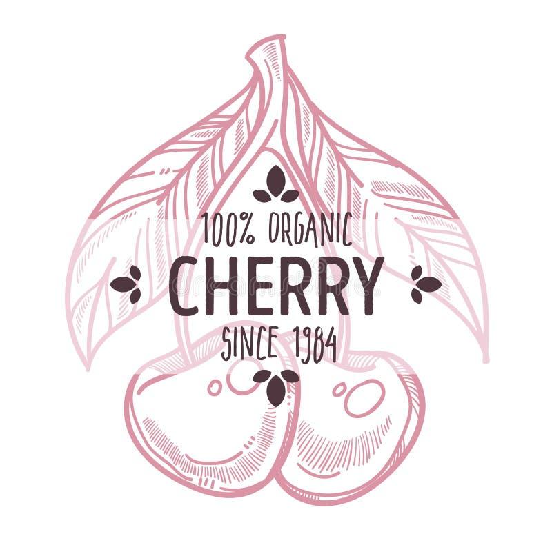 樱桃与在有机庭院莓果上写字的被隔绝的象 库存例证