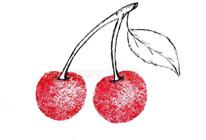 樱桃分支水彩剪影多汁 库存例证