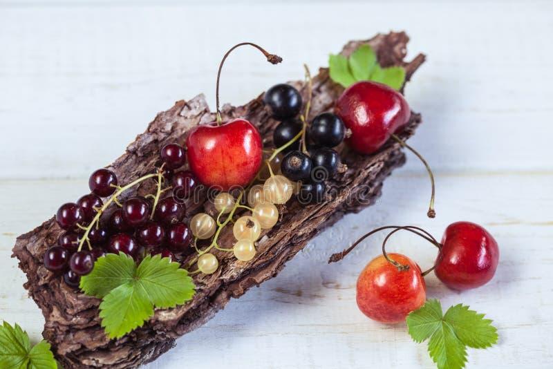 樱桃和无核小葡萄干 库存照片