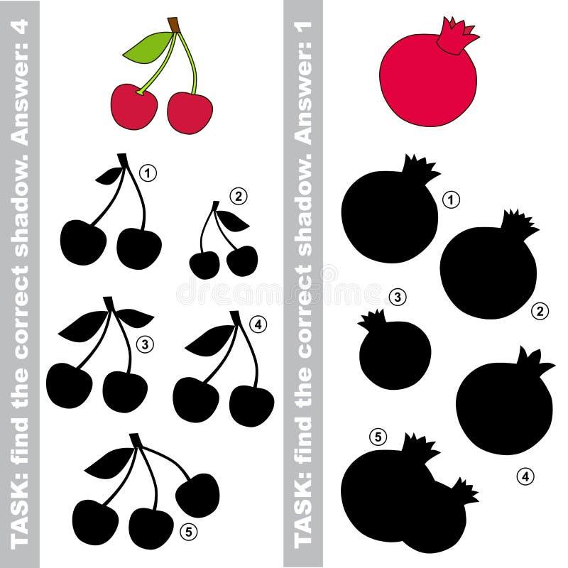 樱桃和石榴 发现真实的正确阴影 向量例证