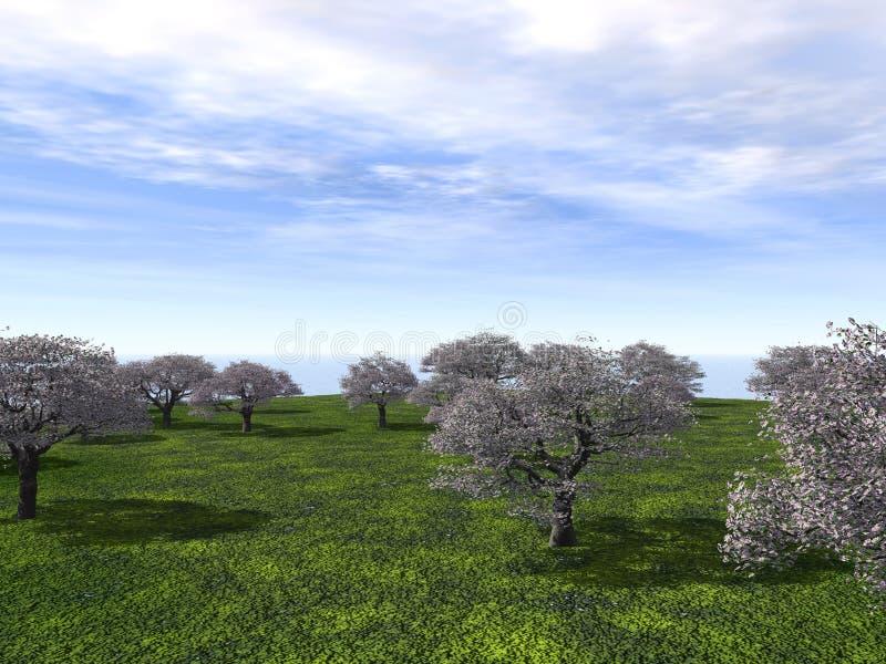 樱桃庭院 向量例证