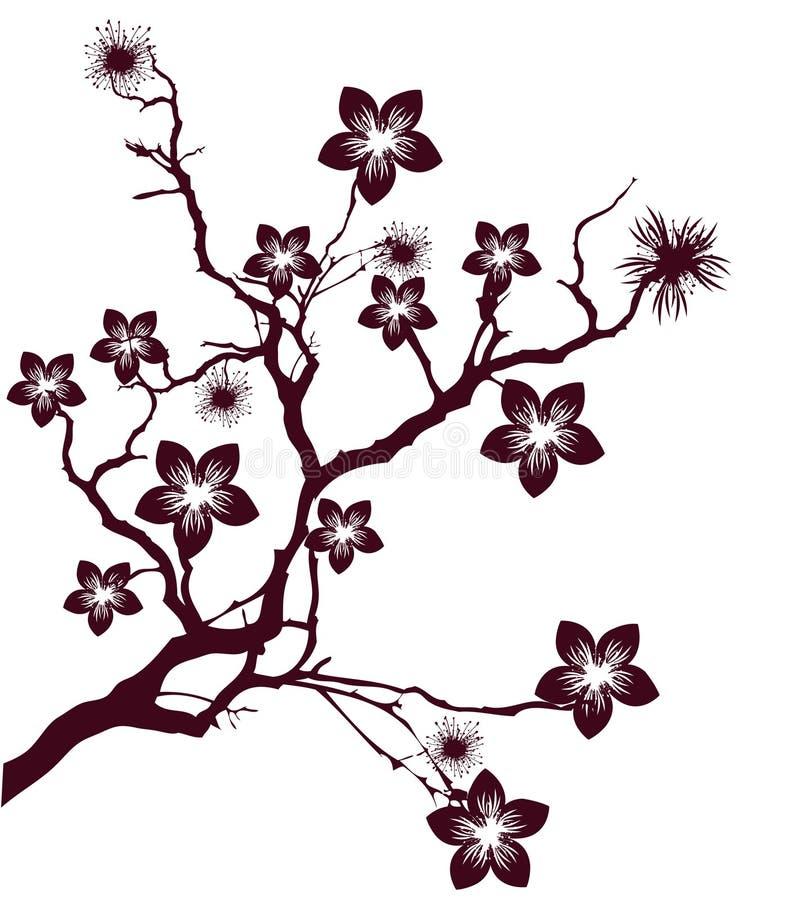 樱桃开花结构树 向量例证