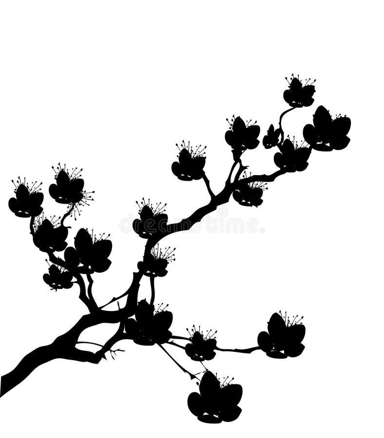樱桃开花结构树 库存例证