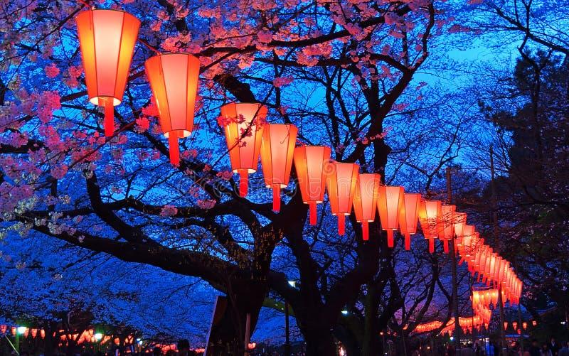 樱桃开花观察(O-Hanami)节日 图库摄影