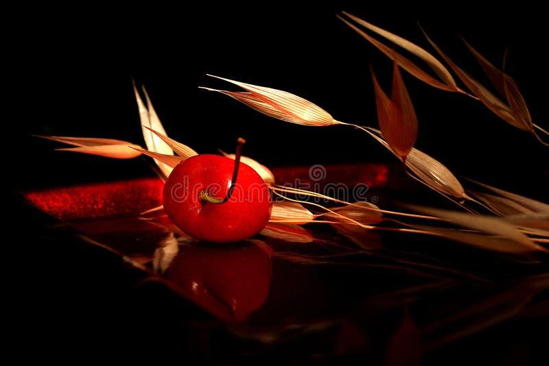 樱桃构成 图库摄影