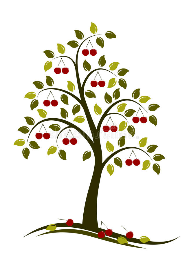 樱桃树 向量例证