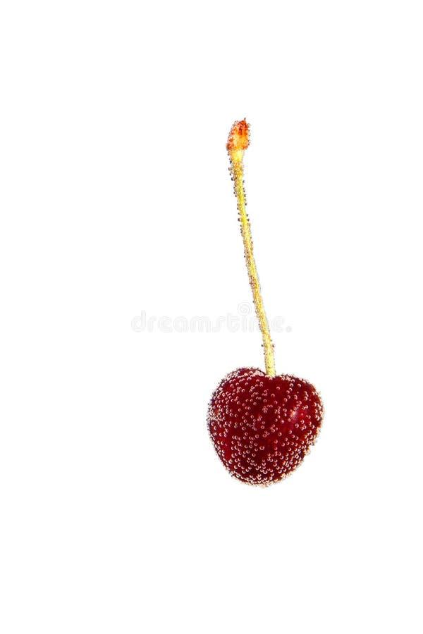 Download 樱桃泡影 库存照片. 图片 包括有 新鲜, 生气勃勃, buboes, 樱桃, 红色, 可口, 成熟, 原始 - 30327420