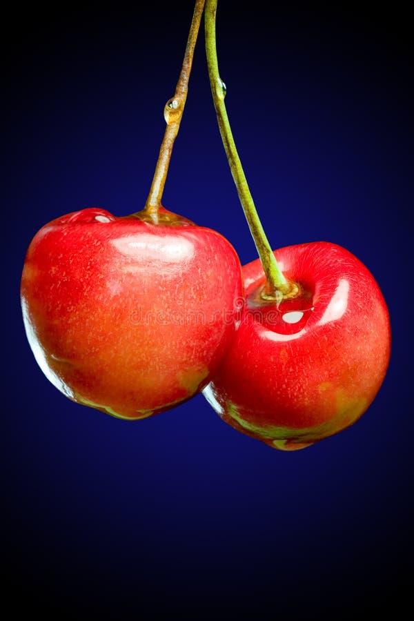 樱桃甜点 免版税库存照片