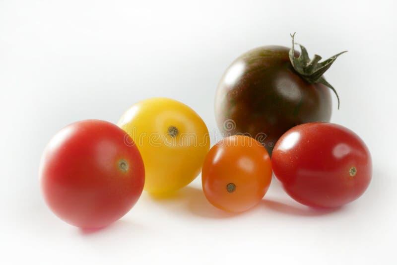 樱桃颜色小的多蕃茄变化 免版税库存照片