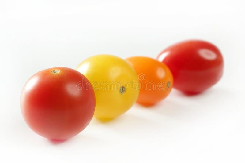 樱桃颜色小的多蕃茄变化 库存照片