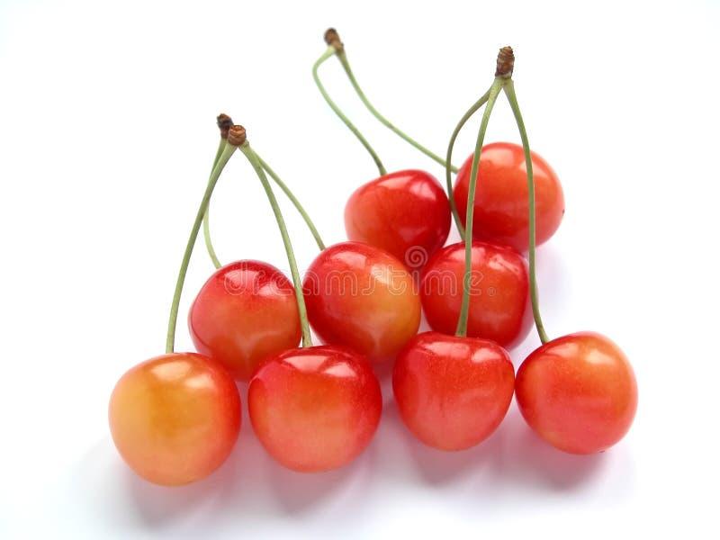 Download 樱桃 库存图片. 图片 包括有 营养, 维生素, 夏天, 樱桃, 汁液, 工厂, 食物, 本质, 红色, 夏令时 - 178343