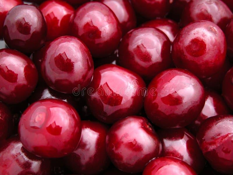 Download 樱桃 库存照片. 图片 包括有 夏天, 红色, 工厂, 饮食, 汁液, 本质, 食物, 夏令时, 樱桃, 小核 - 180270