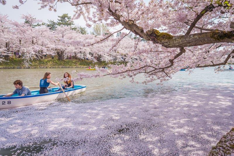樱花在弘前的春天防御,青森县, J 库存照片