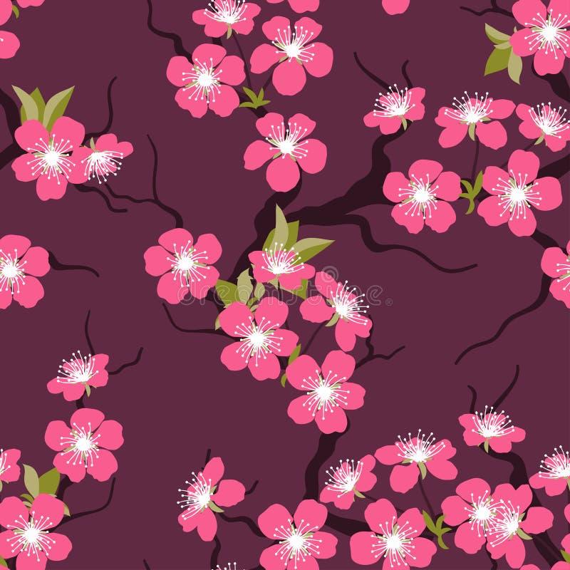 樱花无缝的花纹花样 皇族释放例证