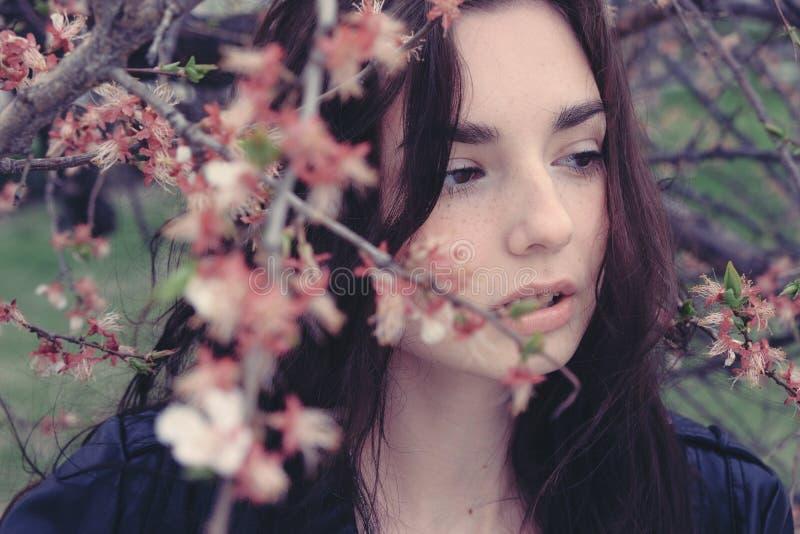 樱花树枝中的悲伤女孩 库存图片