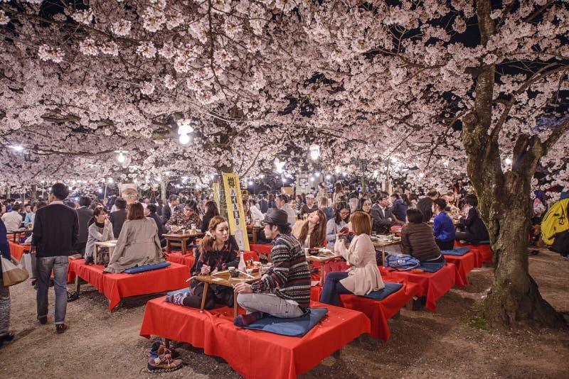 樱花节日 库存图片